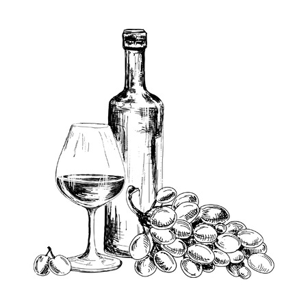 Wine and bunch of grapesHand drawn illustrations Vettoriali