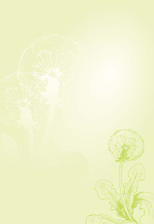 overblown: Dandelion. Hand drawn illustration with green gradient background Illustration