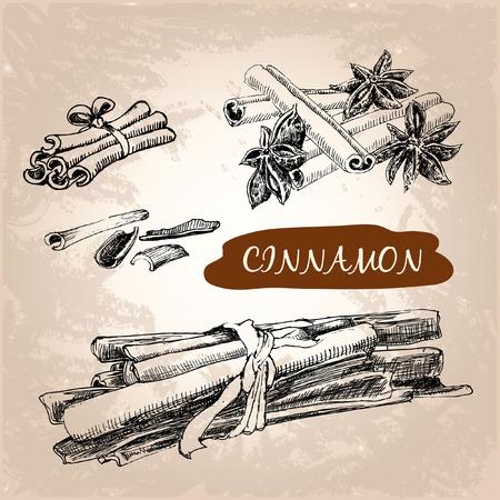 Cinnamon. Set of hand drawn graphic illustration