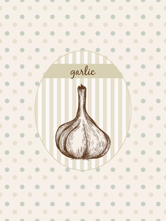 potherb: Garlic. Hand drawn graphic illustration at seamless pattern Illustration