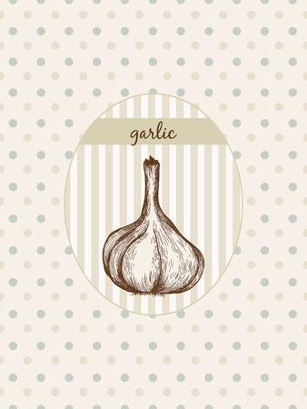 Garlic. Hand drawn graphic illustration at seamless pattern Illusztráció