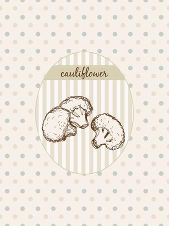Cauliflower. Hand drawn graphic illustration at seamless pattern Vector