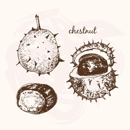 spines: Chestnuts