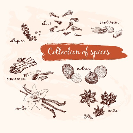 allspice: Collection of spices