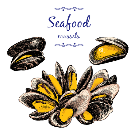 cooked fish: Seafood. Mussels.
