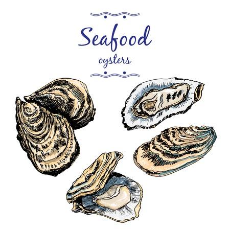 Oysters. Stock Illustratie