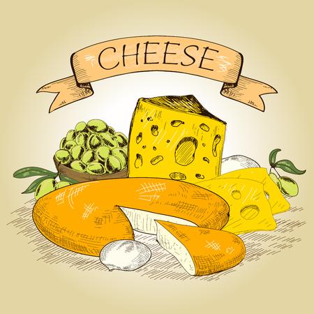 mozzarella cheese: Cheese illustration  Illustration
