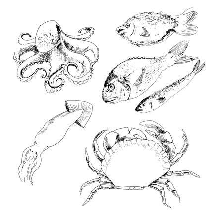 dorado: Seafood