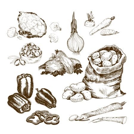 patatas: Colección de verduras.