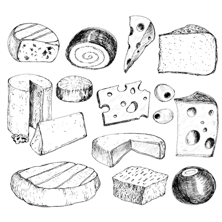 edam: Cheese. Collection of hand drawn graphic illustrations Illustration