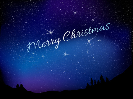 merry mood: Merry christmas. Background with star sky and night forest Illustration