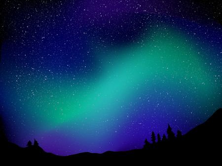 night sky with stars: Northern lights. Background with night sky, stars and forest