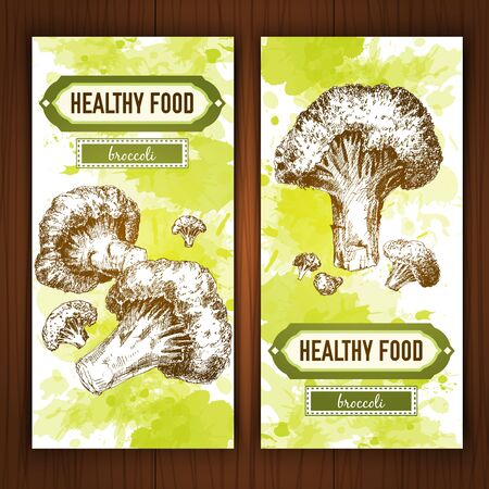 lithograph: Banners with graphic broccoli. Hand drawn graphic illustration on watercolor background