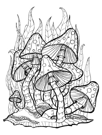 blotchy: Coloring page with forest mushrooms. Isolated outline on white background