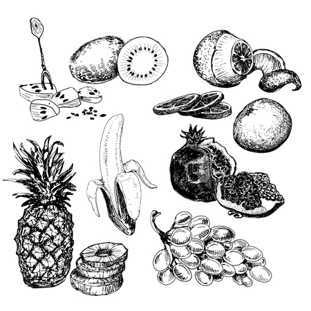savory: Fruits collection. Set of hand drawn graphic illustration in sketch style. Ink food illustrations with grapes, bananas, kiwi and other fruits