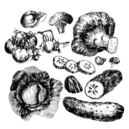 lithograph: Great set of hand drawn vegetables isolated on white background