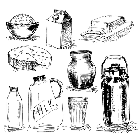 gouda: Collection of milk hand drawn product. Illustration with milk, cheese, butter and other products.