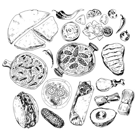 burrito: Hand drawn graphic collection with mexican food illustrations.. Burrito, taco and other mexican traditional food in sketch style