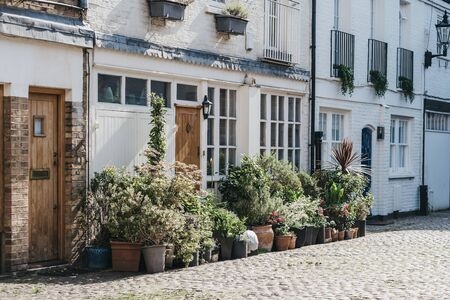 Facade of a typical mews house in London, UK, may plant pots by the entrance. Real estate and property concept.
