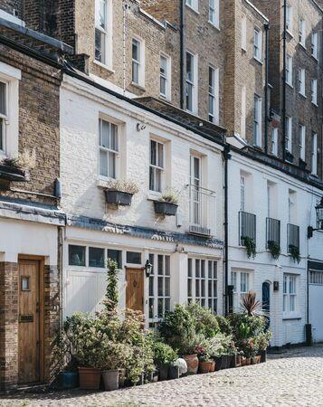 Rangées d'une maison typique de mews à Londres, Royaume-Uni, de nombreux pots à l'entrée. Concept immobilier et immobilier. Banque d'images
