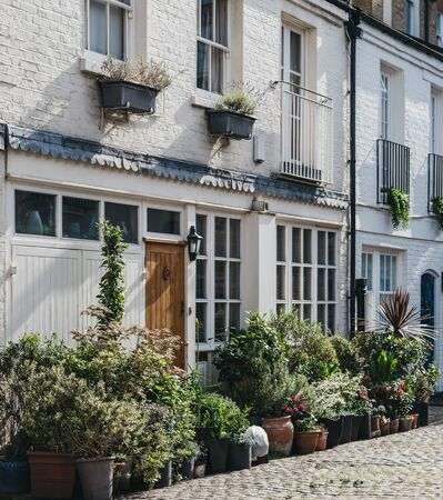 Facade of a typical mews house in London, UK, many plant pots by the entrance. Real estate and property concept.