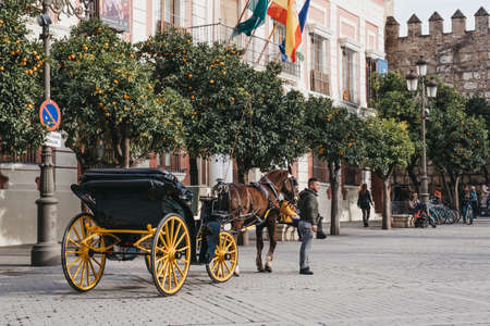 Seville, Spain - January 17, 2020: City tour horse carriage stationary on Plaza del Triunfo, small plaza and popular meeting spot in Seville known for its tall monument & adjacent historic buildings. 報道画像