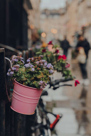 Flower baskets on a street in Bath, Somerset, UK, selective focus, unidentified people on the background. Stock fotó