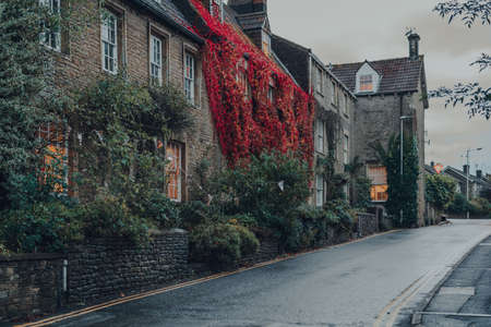 Row of old stone houses covered in colourful foliage on a street in Frome, Somerset, UK, on an autumn day, selective focus.