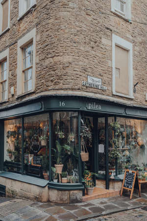 Frome, UK - October 06, 2020: Exterior of Pilea plant shop on a street in Frome, a market town in the county of Somerset famous for its market and independent shops.
