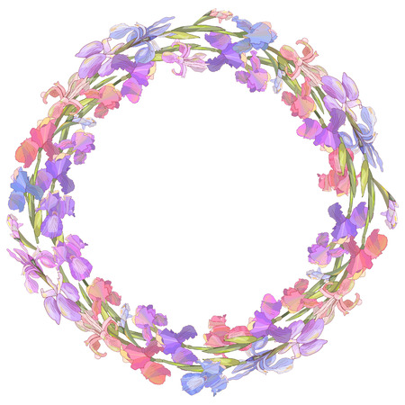 Round season wreath with irises isolated on white. For design gift boxes, announcements, postcards, posters, invitations 免版税图像 - 111908412
