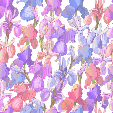 Romantic floral seamless pattern with irises.