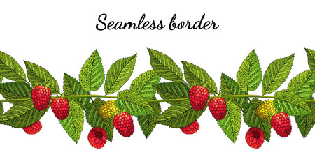 Seamless summer border c raspberries and leaves. Vector illustration