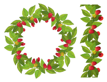 Seamless border and wreath with ripe raspberries and leaves. Vector illustration