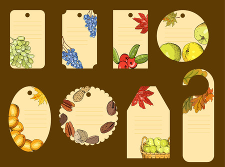 Set of Thanksgiving Day labels for seasonal autumn holiday celebration.