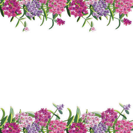 Seamless floral template with phlox flowers isolated on white. Excellent print for greeting cards, clothes, bed linens, fabric, textiles, wallpaper, wrapping paper, gift box.