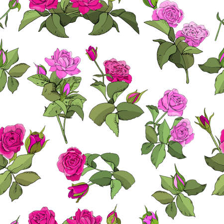 Set of roses and leaves isolated on white background. Excellent for greeting cards and invitations
