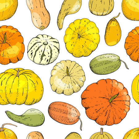 Vector seamless pattern of pumpkin isolate on white.