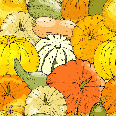 Vector seamless pattern of pumpkin on white background..