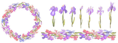 Romantic wreath and seamless border with irises. Vector hand drawn illustration for design gift boxes, announcements, postcards, posters, invitations, visit card.