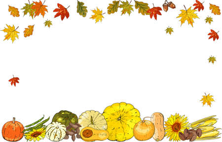 Autumn frame isolated on white background. Pumpkins, leaves. 矢量图像