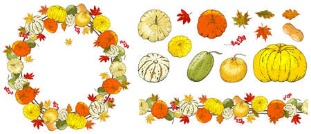 Set of autumn elements isolated on white background. Pumpkins, leaves 矢量图像