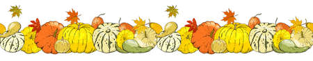 Autumn seamless border isolated on white background. Pumpkins, leaves.