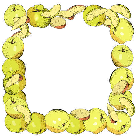 Square template with apples, apple slices. Hand drawn food illustration.