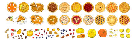 Set of pies with different toppings. Vector illustration isolated on white background.