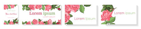 Hand drawn cards of pink roses, leaves, bud and an open flower. Flower rose, green leaves.