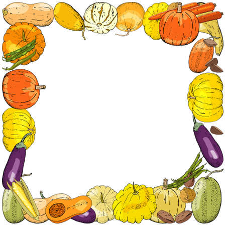 Horizontal Square autumn rectangle colored frame composed of different fresh vegetables. Vector card illustration. Rectangle apple frame pumpkins, zucchini, peas, nuts, eggplant for design of food.