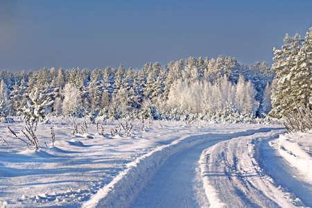 Winter Landscape Stock Photo - 16857868