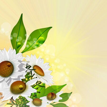 Background  flowers Stock Photo - 17628628