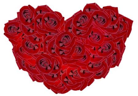 Photo. heart of roses photo