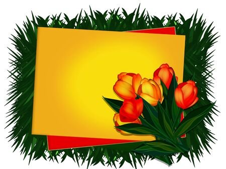 Frame for inscriptions. tulips photo